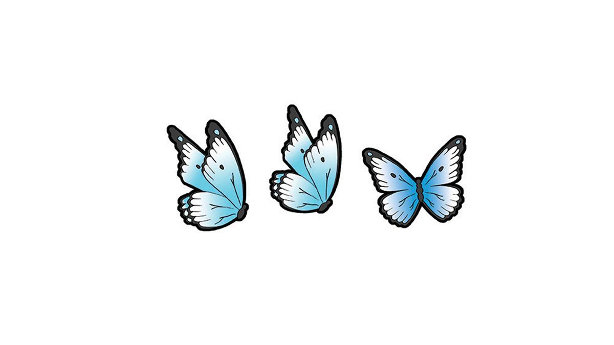 _0004__0013_kuvitus-perhoset