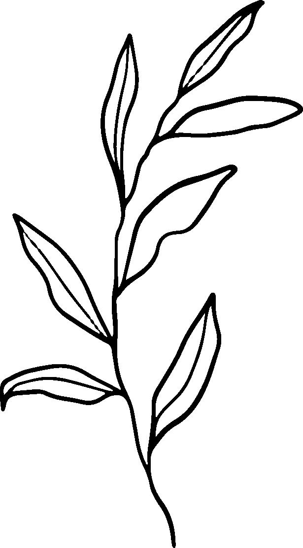 paivi-lehti-musta2